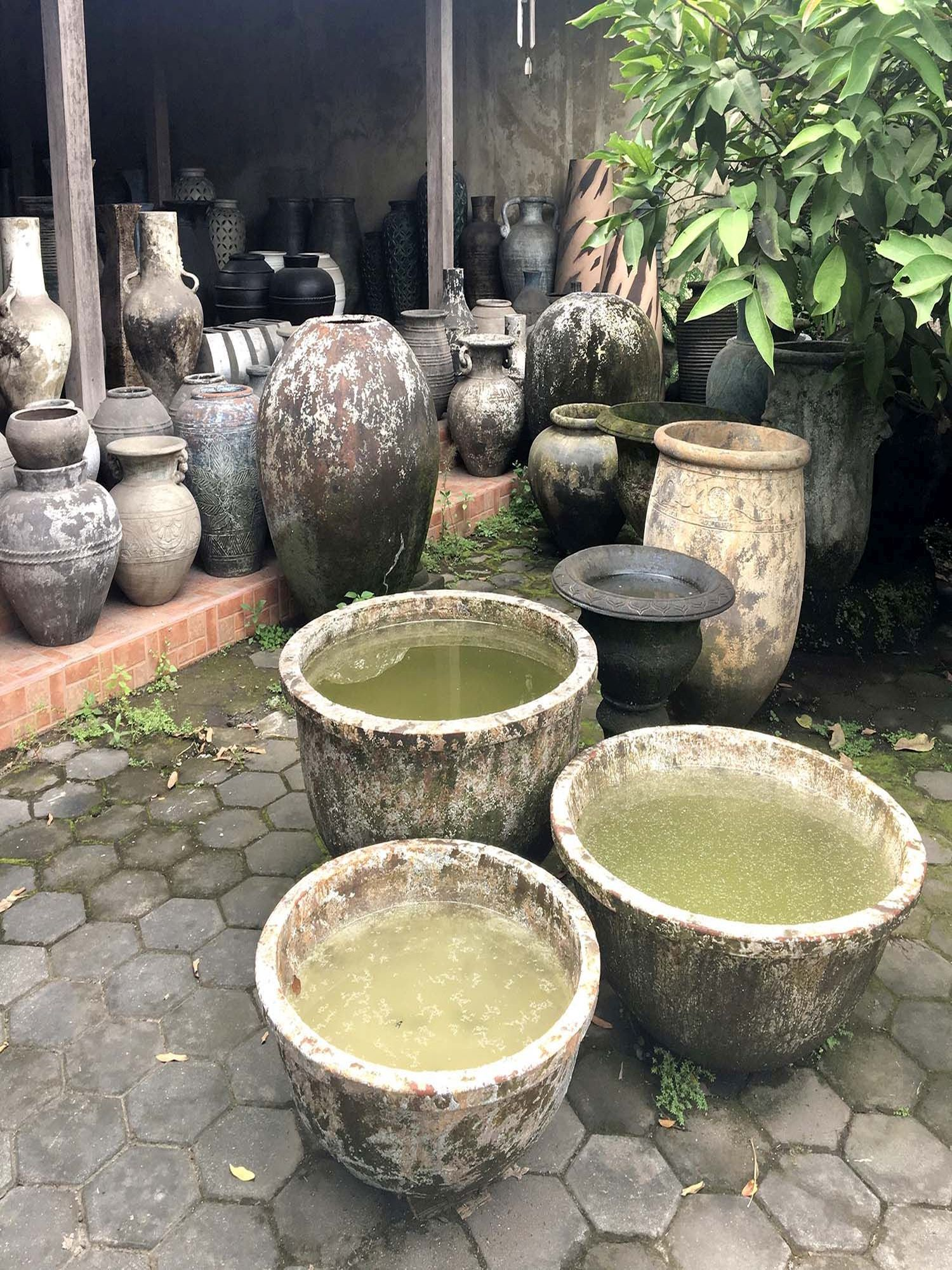 Sasu's Playhouse Indonesia ruukut